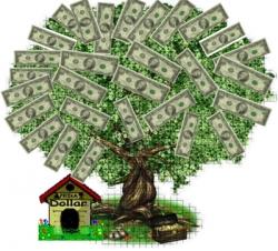 Банковские проценты по кредитам заинтересовали Госконтроль