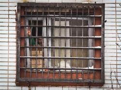 Задержанные граждане России во время выборов еще сидят в белорусской тюрьме