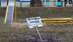 К совести владельцев собак взывают жители дома в Серебрянке
