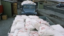 «Беларуськалий» спекулянты лишили 2,7 млн долларов