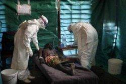 По итогам первых испытаний вакцина от Эболы Glaxo признана безопасной