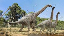 Ученые рассказали о причине вымирания динозавров