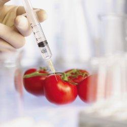Официально в США признали безопасность модифицированных генетически продуктов