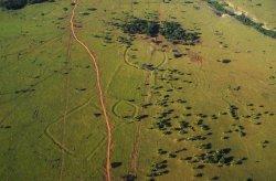 Больше сотни двойников Стоунхенджа нашли в Амазонских лесах